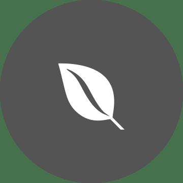 Ilgtspējības ikona