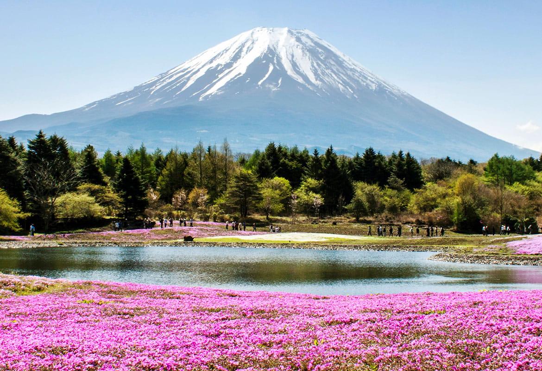 Fuji kalns