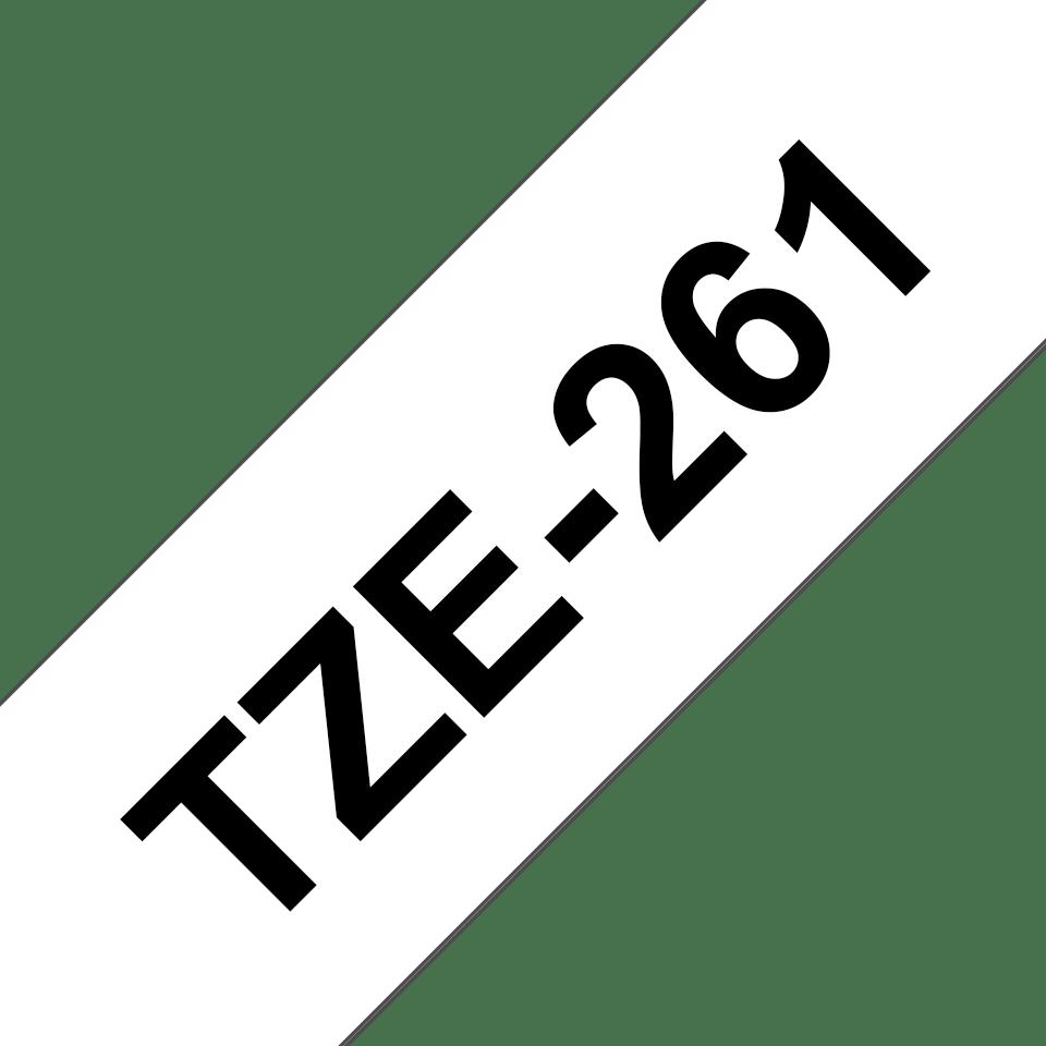 TZe261_main